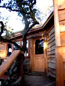 TreeHouse Deluxe 1000sq ft