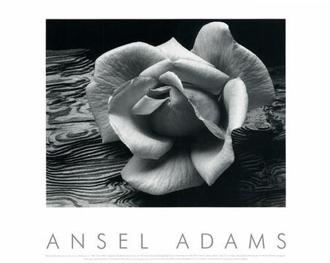 Ansel Adamsposter