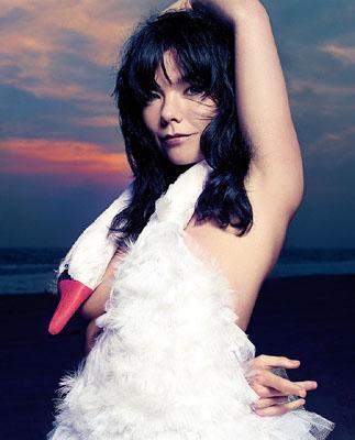 Bjork Swan Dress2