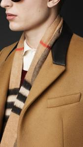Chesterfield Coat at Burberry