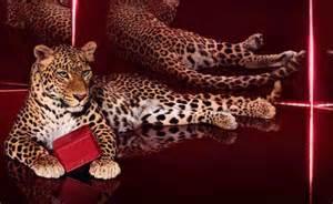Cartier leopard 4