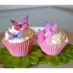 Edible Wafer Paper Butterflies