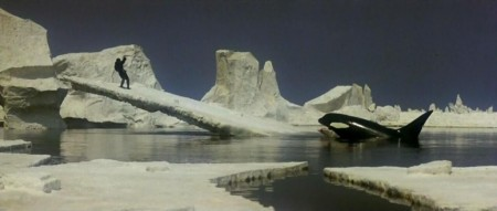Orca starring Richard Harris