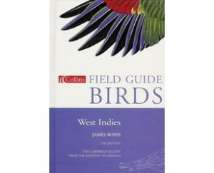 bo014-birds-of-the-west-indies-dad