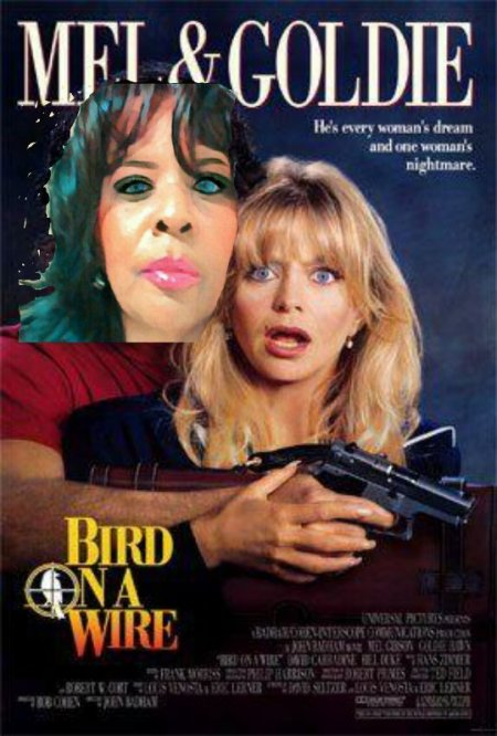 Goldie Hawn Bird on a Wire