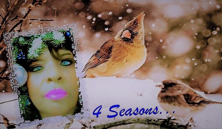 Renee Ashley Baker st louis snow 2